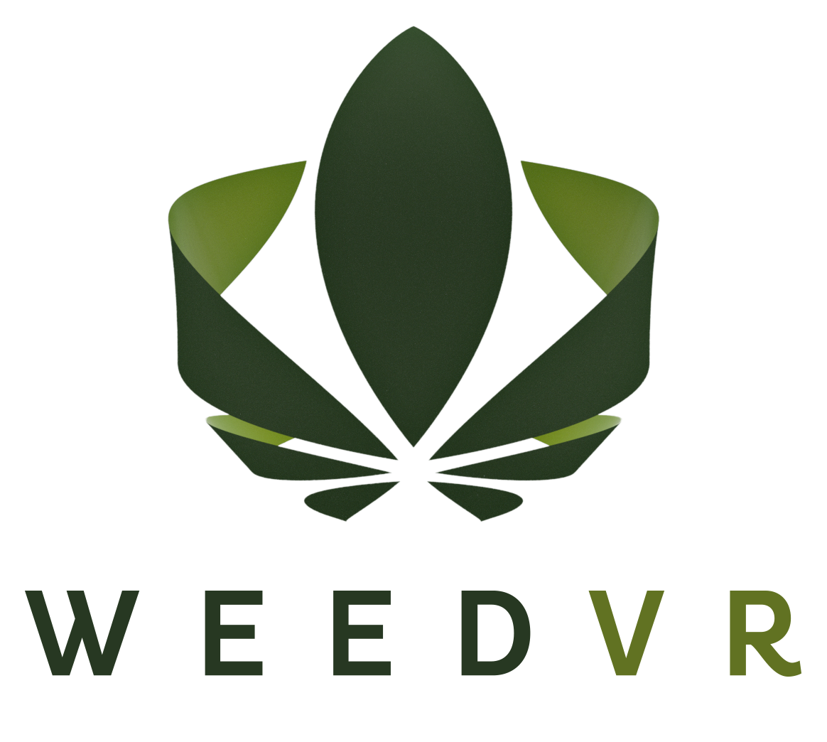 Weed VR Launches @ 420 to Great Response